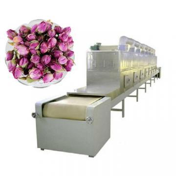 Dw Series Conveyor Mesh Belt Dryer /Drier/ Drying Machine for Ginger /Flower /Leaf