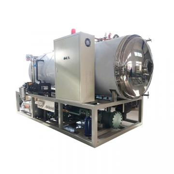 Fruit Freeze Drying Dryer Dehydrator Machine Price