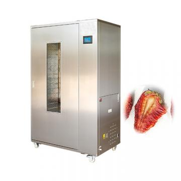 Industrial Automatic Lowest Price Fruit Dryer Machine